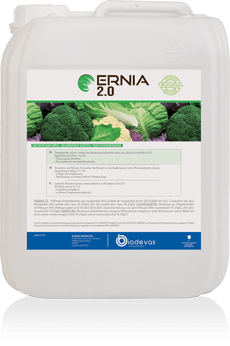 Ernia 2.0